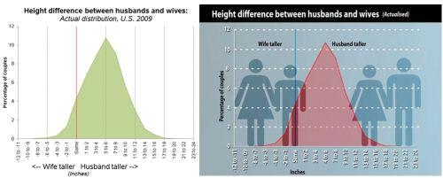 dm-height1